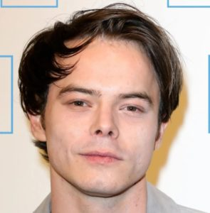 Charlie Heaton-Wife-Engaged-Son-Baby Mother-Net Worth